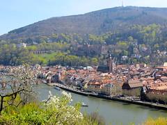 Uitzichtje op Heidelberg