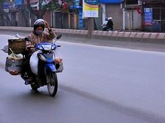 Hanoi . Good morning funny foreigner ! (Marco Sarli) Tags: life street woman lumix driving candid vietnam motorcycle hanoi waving hallo