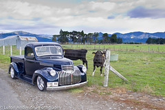 The 46 Down on the farm (Luton Anderson) Tags: up magazine head chevy nz petrol pick 1946 rodder