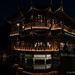 """Nocturne_Pairi_Daiza_13092014-125 • <a style=""""font-size:0.8em;"""" href=""""http://www.flickr.com/photos/100070713@N08/15854332163/"""" target=""""_blank"""">View on Flickr</a>"""