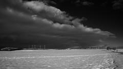 am hungerberg (photobeam ( Better grays through research  )) Tags: schnee snow germany see am saarland losheim rimlingen