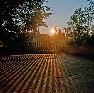 sunbeams and sundust