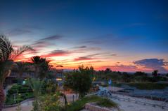 Evening palms /   (Kochum) Tags: sunset sky sun clouds palms nikon desert redsea egypt 1020 hdr    elquseir d90 sigma1020      alqusayr cloudsstormssunsetssunrises