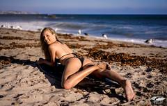 Sony A7 R RAW Photos of Pretty, Tall Blond Bikini Swimsuit Model Goddess in Laguna Beach! Victoria Beach! Carl Zeiss Sony FE 55mm F1.8 ZA Sonnar T* Lens & Lightroom 5.3 (45SURF Hero's Odyssey Mythology Landscapes & Godde) Tags: ocean woman hot sexy beach girl sport athletic model sand women pretty surf gorgeous blueeyes malibu bikini blond surfboard blonde sexiest fitness fit longlegs hottest surfgirl sexygirl fitnessmodel bikinimodel longblondehair girlmodel swimsuitmodel 45surf athelticgirl