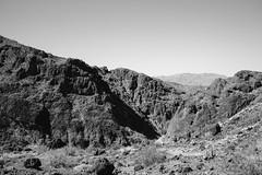 5R6K2512 (ATeshima) Tags: arizona nature havasu