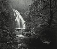 2008-05-15 - 67 (Yuriy Sanin) Tags: blackandwhite fog forest river dark waterfall sanin     dampness yuriy