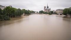 Paris - Crue de la Seine - 2016 (Dakysto94) Tags: paris seine notredame notre dame crue 2016