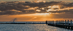 The photographer (dicktay2000) Tags: au sydney australia newsouthwales northnarrabeen richardtaylor 20151205pc056691