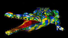 Taronga Zoo Vivid 7 (RoosterMan64) Tags: lights vivid australia nsw tarongazoo
