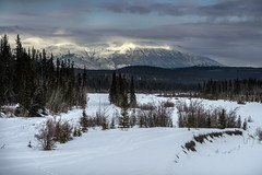 Mountain light at Kluane (tmeallen) Tags: snow canada mountains clouds landscape alaskahighway hainesjunction borealforest lateday tracksinsnow kluanenationalpark yukonterritory mountainlight snowcoveredmountains