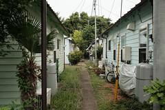 DSCF9805 (keita matsubara) Tags: japan  saitama  iruma   r16 johnsontown