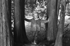 Nikon FE2; Ilford FP4; ID11 (mravcolev) Tags: park trees blackandwhite bw film nature girl monochrome 35mm spring child naturallight analogue ilford fp4 daydreaming nikonfe2 id11 homedevelopment nikkor50mm14ais epsonperfectionv700