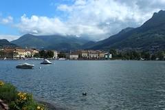 Lugano (bulbocode909) Tags: fleurs jaune tessin suisse maisons vert bateaux bleu lacs nuages lugano printemps paysages villes montagnes