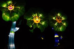 _DSC9691_2 (Elii D.) Tags: light fish flower animal night zoo monkey neon dragons lantern lampion dargon