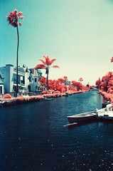 Venice Canals 01 (analoguefilm) Tags: film 35mm minolta kodak 28mm infrared venicebeach vivitar colorinfrared f25 venicecanals filmphotography fpp minoltax570 colorinfraredfilm f135 aerochrome kodakaerochrome infrachrome nexlab pakonf135