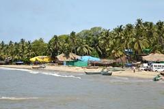 Malvan Beach (Patiljayendra) Tags: malvan malvanbeach cost konkan sindhudurg beach coconuttrees nature