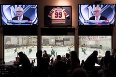 NHL's Board of Governors approve Las Vegas expansion franchise (FreezeTimeDigital) Tags: las vegas sports hockey nhl bill nikon professional d750 foley lasvegasreviewjournal
