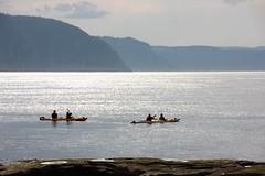 (Jocelyne Gagn) Tags: canada juin kayak t tadoussac 2016 fleuvesaintlaurent fjorddusaguenay amriquedunordtadoussac