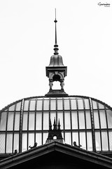 Altes Glasdach (GeronimoPictures) Tags: pictures street old city trip travel roof light vacation blackandwhite bw sun white holiday black color colour building art history public beautiful architecture canon germany geotagged deutschland photography eos licht hall europa europe day view image photos pics outdoor alt kunst hamburg north norden sightseeing perspective picture sigma pic architektur p bild dach fishmarket halle bilder fischmarkt exciting beginner lightroom geronimo anfnger nocolor nocolour onecolour monocolour sigma1770 canon60d canoneos60d eos60d geronimopics geronimopictures