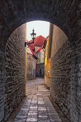 Hallway In Tallinn (k009034) Tags: 500px wall copy space estonia tallinn alley arch architecture brick building city hallway lantern medieval no people old town street travel destinations teamcanon copyspace nopeople oldtown traveldestinations