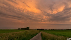 Gorgeous cloudy sky (BraCom (Bram)) Tags: trees sunset cloud holland netherlands field grass canon evening zonsondergang bomen glow path widescreen pad nederland gras nl avond polder 169 veld gloed wolk zuidholland goereeoverflakkee southholland canonef24105mm melissant bracom canoneos5dmkiii bramvanbroekhoven