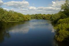 DSC05517 (tetryk68) Tags: river shannon