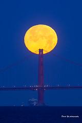Moonset - South Tower (davidyuweb) Tags: moon tower bay san francisco south fullmoon area sanfranciscobay ful moonset francsico sfist southtower luckysnapshot