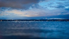 Blue Sea (bombeeney) Tags: seattle longexposure blue water night dof olympicpeninsula pugetsound shallow goldengardens a7s batis85mm18