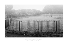 172/365 (Lucy Davey Photographer) Tags: misty morning park deserted locked fence cornwall