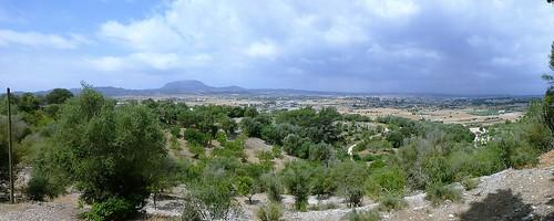 Majorca (90)