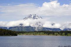 Mt Moran across Jackson Lake (V. C. Wald) Tags: grandtetonnationalpark jacksonlake mtmoran signalmountainlodge