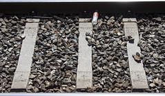 Rail frame (santinet) Tags: detalle train cola rail via frame coca renfe