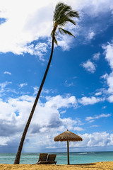 The Ewa Beach Life (J Michel Photography) Tags: ocean tree beach water canon landscape hawaii oahu sunny palm cabana palmtree 5d ewabeach beachescape