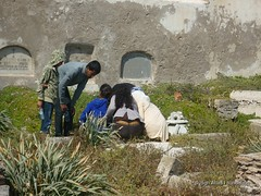 5 May 2013 - Visit to Christian and Jewish cemeteries with young people 16 (High Atlas Foundation) Tags: cemeteries heritage cemetery tolerance jewish coexistence essaouira cultural preservation fha haf communitydevelopment civilsociety sustainabledevelopment jewishmuslim capacitybuilding participatorydevelopment highatlasfoundation