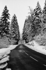 3208.Winter (Greg.Photographie) Tags: road winter blackandwhite bw film rollei analog noiretblanc 200 epson neige 28 45mm schneiderkreuznach v500 oyonnax superpan adox r09 polomat