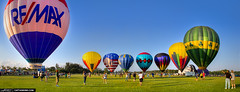 Balloon-Festival-2013-at-Gulfstream-Polo-Club (Captain Kimo) Tags: photoshop florida hotairballoon polo topaz balloonfestival lightroom lakeworth hdrpanorama singleexposurehdr poloamerica captainkimo builtfordtoughpolo gulfstreampoloclub