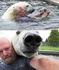 Amigo urso / my friend, the polar bear, by Mark Dumas (Dona Minúcia) Tags: man art pool animal amigo photo friend piscina polarbear amizade homem urso amigourso markdumas