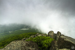 A Peek under the Curtain (konrad_photography) Tags: blue mountains green fog clouds spring rocks top sharp ridge parkway summit appalachians peaksotter