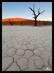 Deadvlei Sunrise (Photography by Sue) Tags: sunrise namibia deadvlei