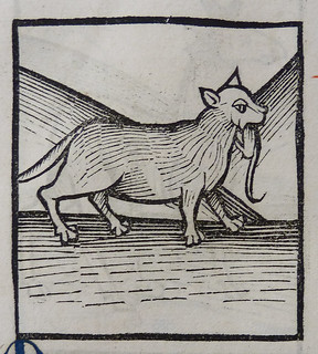 From http://www.flickr.com/photos/58558794@N07/9134721990/: Woodcut of a cat
