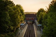 Chigwell Station Sunset (www.paulshearsphotography.com) Tags: travel bridge trees windows sunset sky sunlight building brick green glass leaves station yellow metal skyline concrete gold daylight leaf day horizon tube platform clear journey trainstation commute tubestation londonunderground traintrack commuters goldenhour centralline trainline goldenyellow travek chigwell
