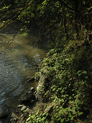 IMG_1085 (andre vautour) Tags: light canon review valley s100 andrevautour