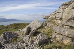 Great Orme limestone (Marion CW) Tags: wales limestone greatorme brachiopods