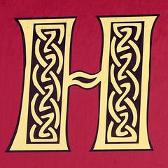letter H (Leo Reynolds) Tags: canon eos h 7d letter f80 hhh oneletter 105mm iso250 0006sec hpexif grouponeletter xsquarex xleol30x xxx2013xxx
