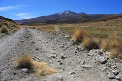 The road to Uturuncu