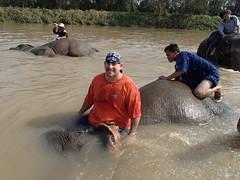 Anantara Golden Triangle Elephant Camp