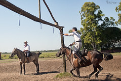 Corrida De Sortija (Karnevil) Tags: show horses horse southamerica argentina buenosaires cowboy fiesta pony corrientes americas gaucho poniescasasantaana