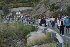 Romera (128) (GonzalezNovo) Tags: mediterraneo granada jete romera costatropical bodijar bodijar2014 romeradebodijar virgendebodijar