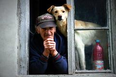The dog and his man (Cristian Ştefănescu) Tags: street old friends portrait dog window animal strada fav50 alt fenster oldman hund portret freunde batran prieteni fav25 fereastra oravita flickr10 bildniss twittertuesday flickr10photowalk