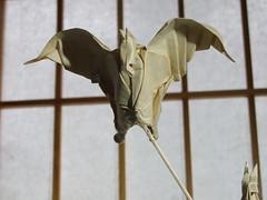 CHEVROQUETS (6) (MAD FOLDER) Tags: origami normandie papier pliage